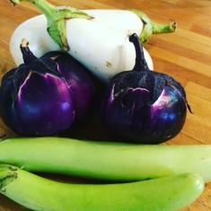 diverse eggplant